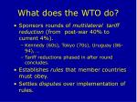 what does the wto do