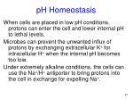 ph homeostasis