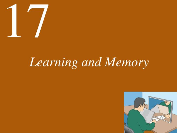 learning and memory n.