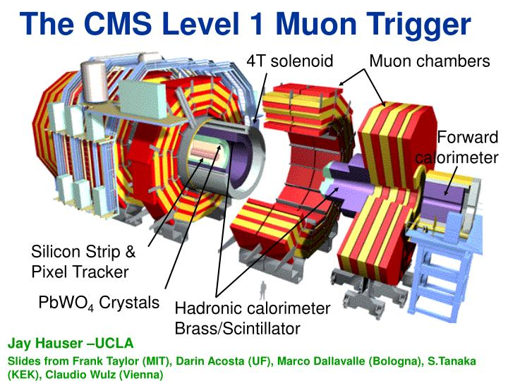 the cms level 1 muon trigger n.