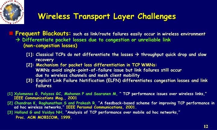Wireless Transport Layer Challenges