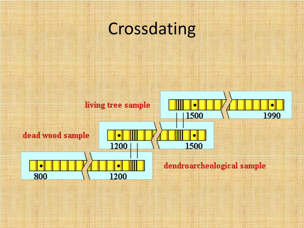 Hoe tree ring dating werkt