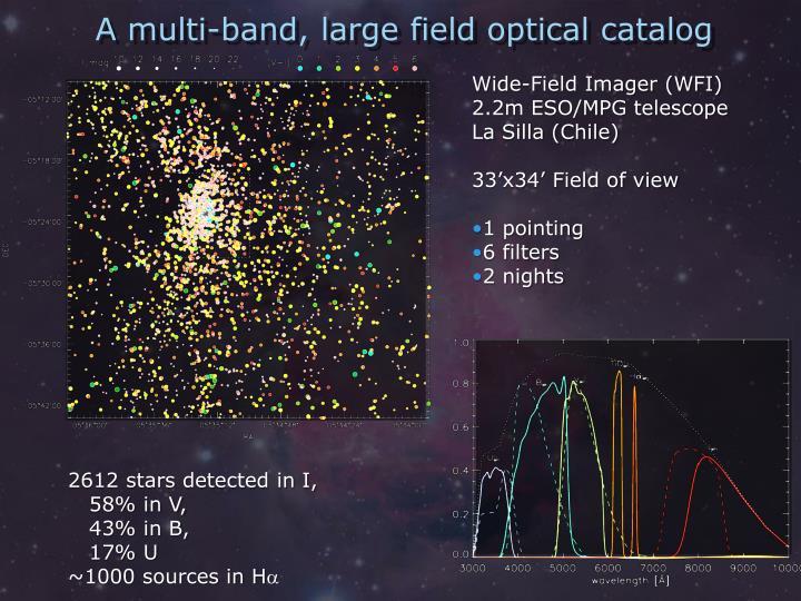 A multi-band, large field optical catalog
