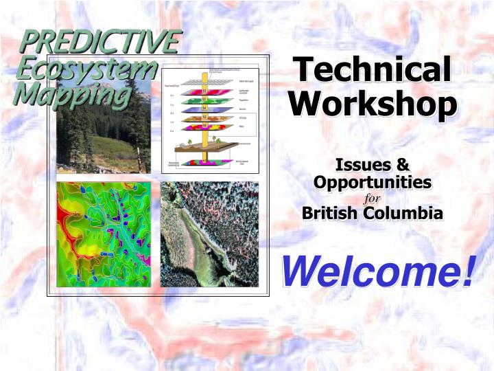 technical workshop issues opportunities for british columbia n.