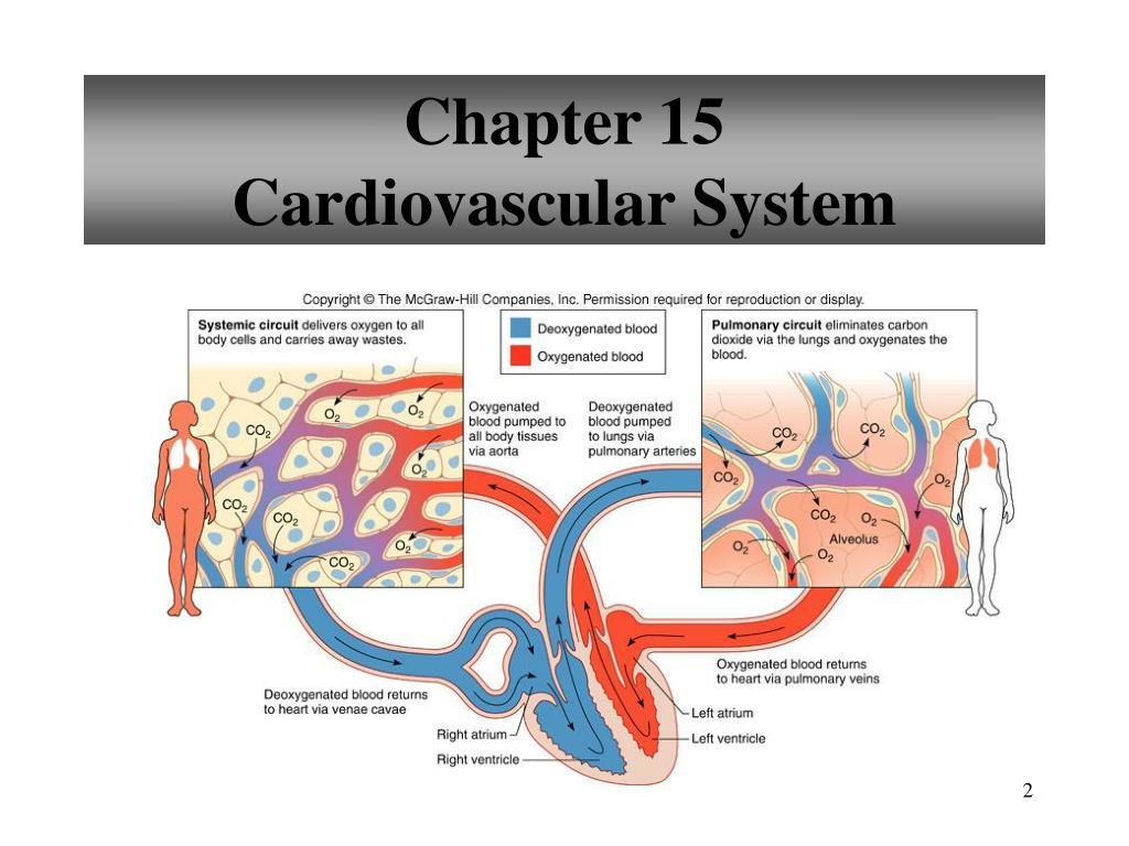 Clinical neurology case studies