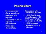 paichicultura