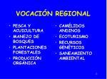 vocaci n regional
