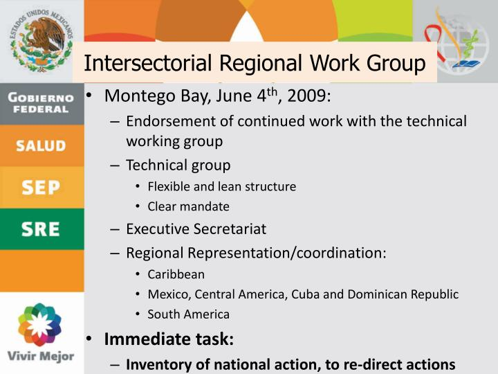 Intersectorial Regional Work Group