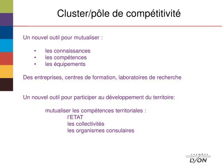 Cluster/pôle de compétitivité