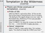 temptation in the wilderness cont d3