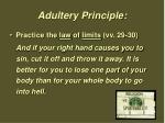 adultery principle2