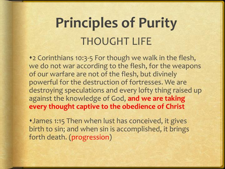 Principles of Purity