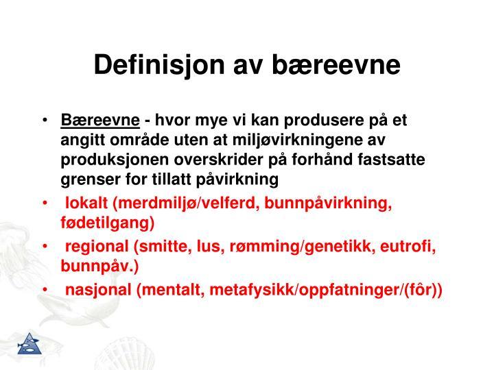 Definisjon av bæreevne