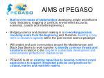 aims of pegaso