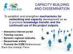 capacity building and dissemination