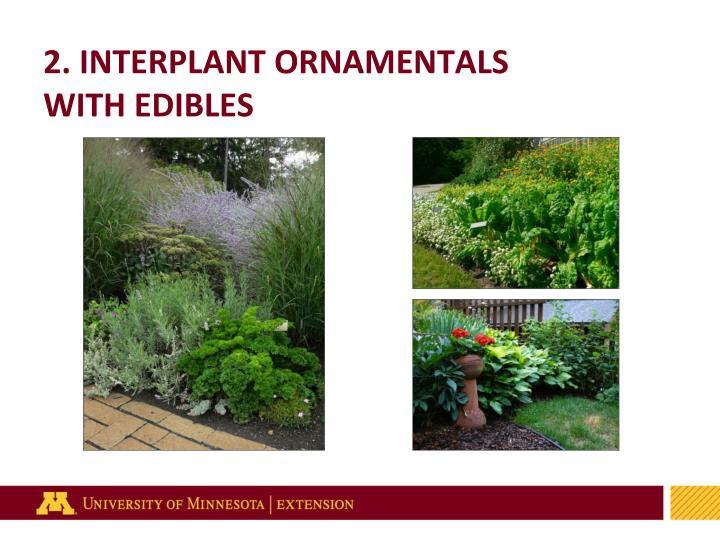 2. INTERPLANT ORNAMENTALS