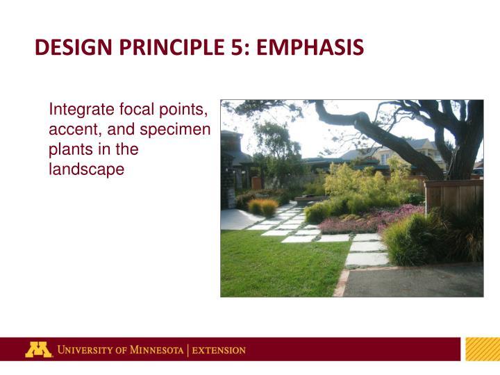 DESIGN PRINCIPLE 5: EMPHASIS