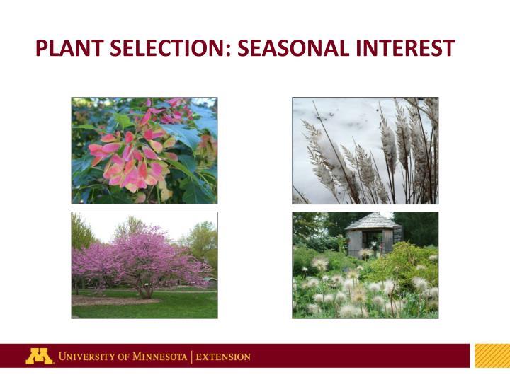 PLANT SELECTION: SEASONAL INTEREST