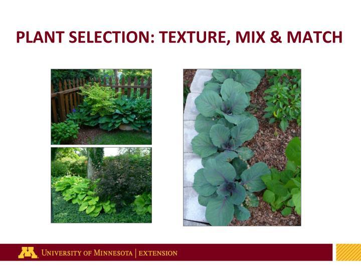 PLANT SELECTION: TEXTURE, MIX & MATCH