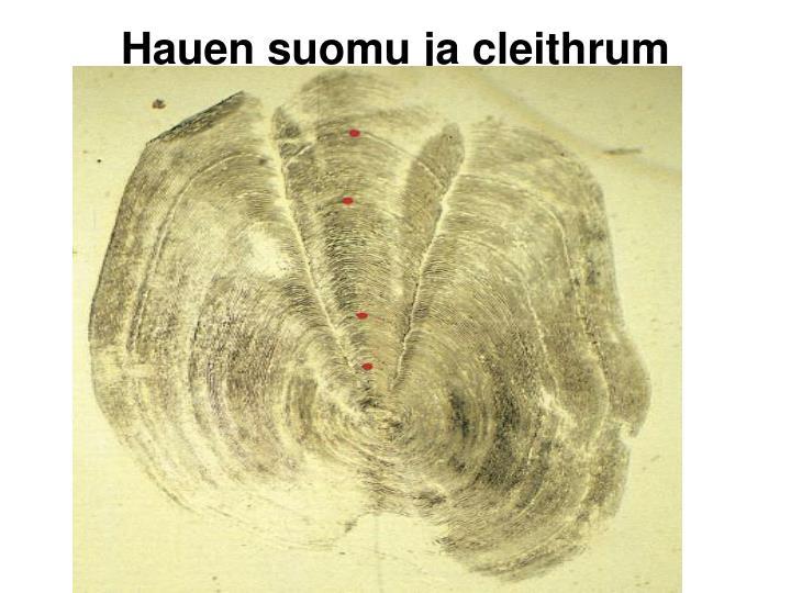 Hauen suomu ja cleithrum