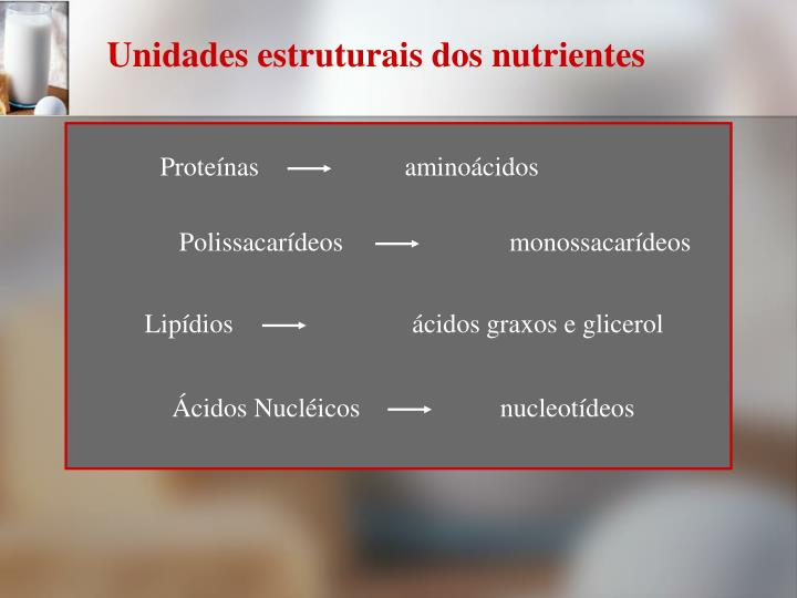 Unidades estruturais dos nutrientes