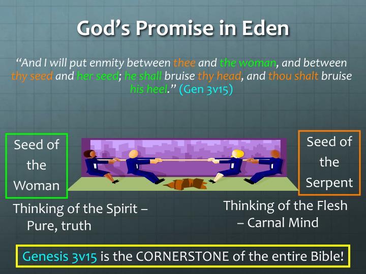 God's Promise in Eden