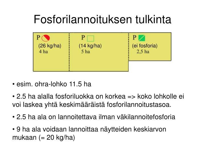 Fosforilannoituksen tulkinta