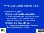 what will global grants fund
