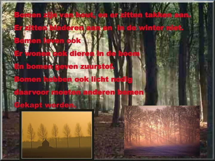 Bomen zijn van hout, en er zitten takken aan.
