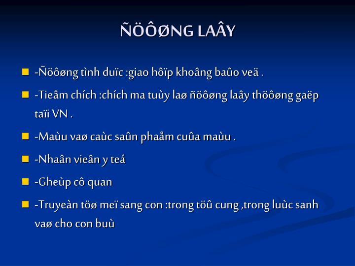 ÑÖÔØNG LAÂY