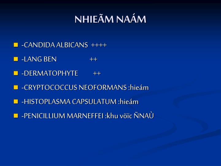 NHIEÃM NAÁM