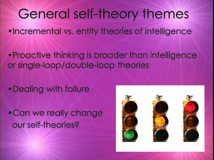 General self-theory themes