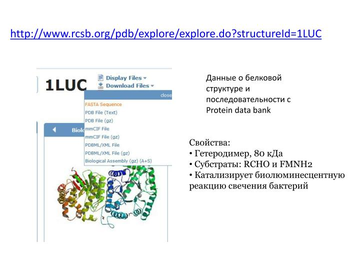 Http www rcsb org pdb explore explore do structureid 1luc