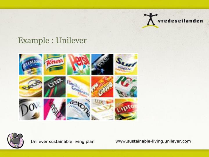 Example : Unilever
