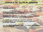 signaux du quorum sensing