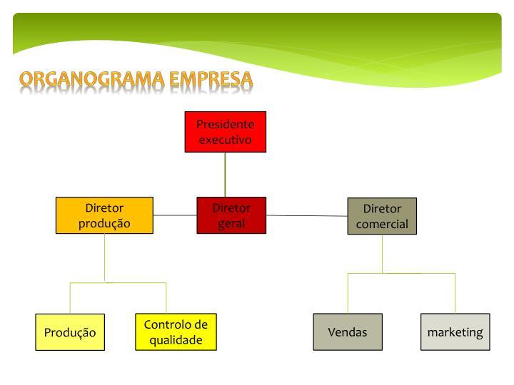 Organograma empresa