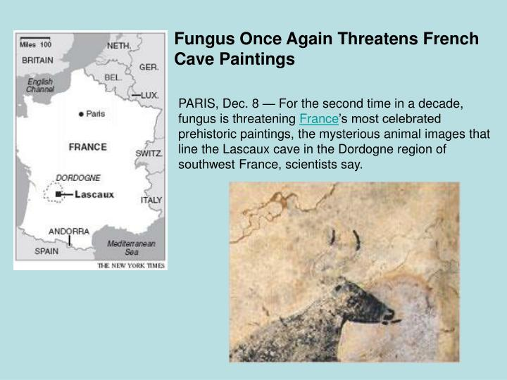 Fungus Once Again Threatens French Cave Paintings