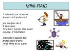 mini raid