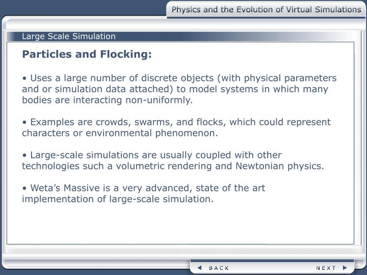 Large Scale Simulation