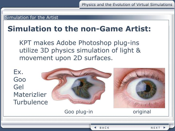 Simulation for the Artist
