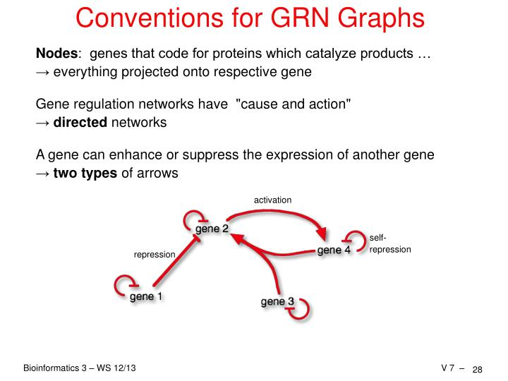 Conventions for GRN Graphs