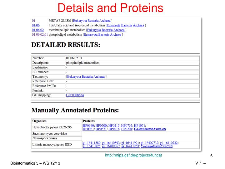 Details and Proteins