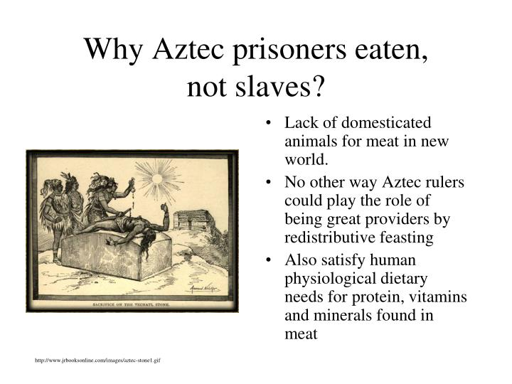 Why Aztec prisoners eaten,