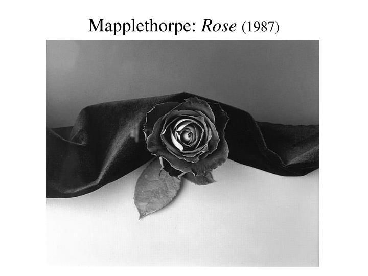 Mapplethorpe: