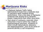 marijuana risks1