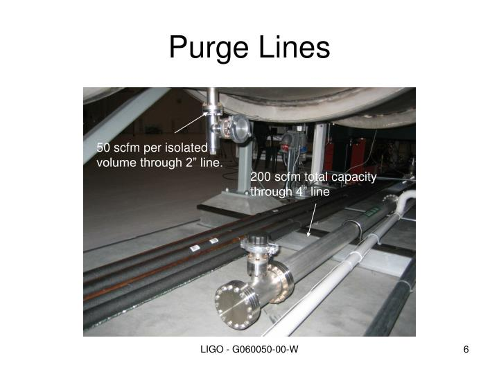Purge Lines