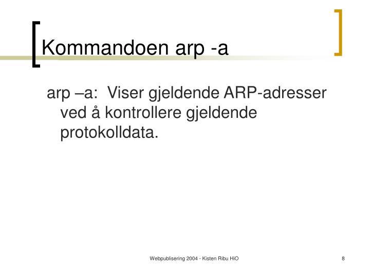 Kommandoen arp -a