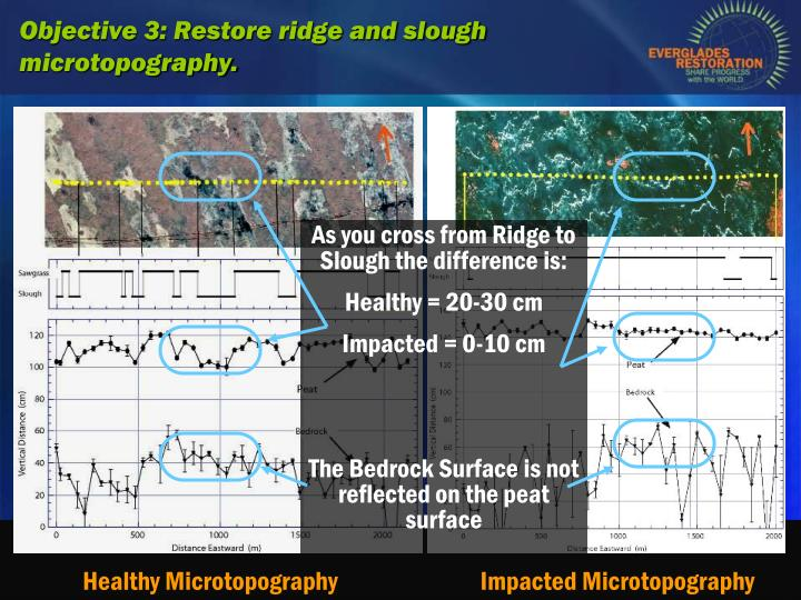 As you cross from Ridge to Slough the difference is: