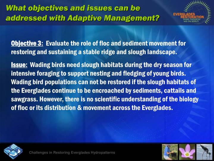 What objectives and issues can be addressed with Adaptive Management?