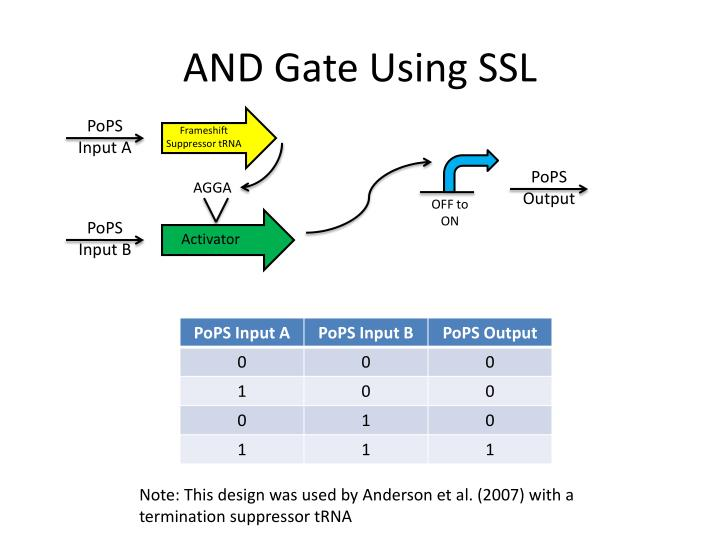 AND Gate Using SSL